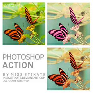 Photoshop Action Photo Color Effect